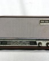 Radio RAYTRON Gran Prix