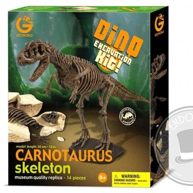 Carnotaurus Scheletro - Kit di scavo