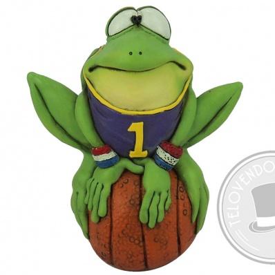Rana Fred Campione di Basket